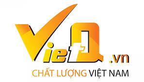 Việt Q